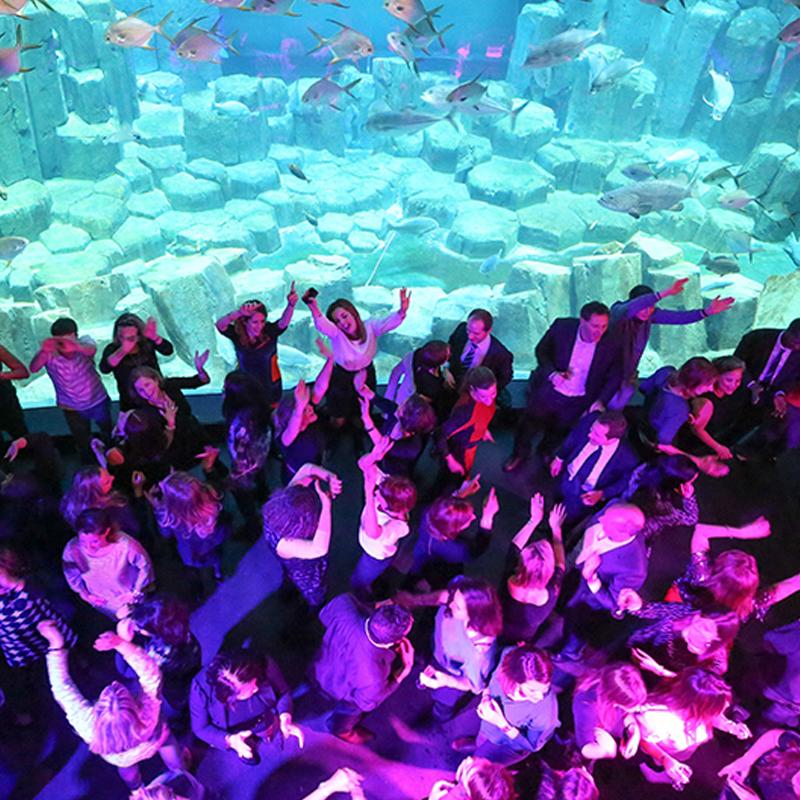 Gala IPSA - Aquarium de Paris