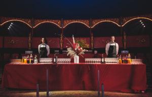 Organisation d'une soirée dans un cirque